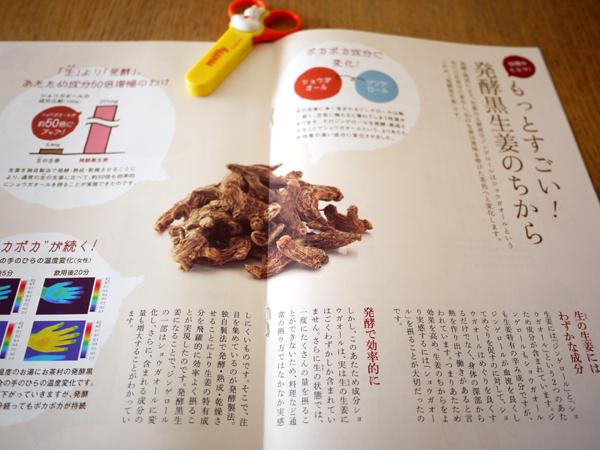 発酵黒生姜パンフレット