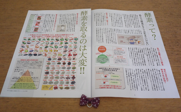 みやびの植物酵素100パンフレット